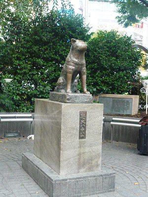 日本Day70|東京大學校園體驗記。東大食堂
